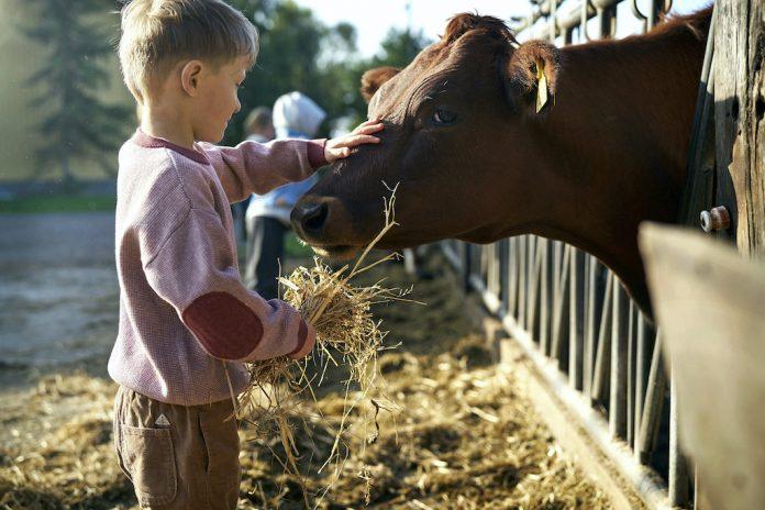 Åbent Landbrug